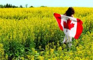 Oilseeds annual production in Canada