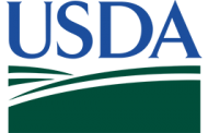 Usda invests in agricultural entrepreneurs
